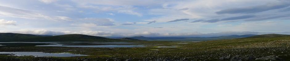 Harrijärvi horisontissa
